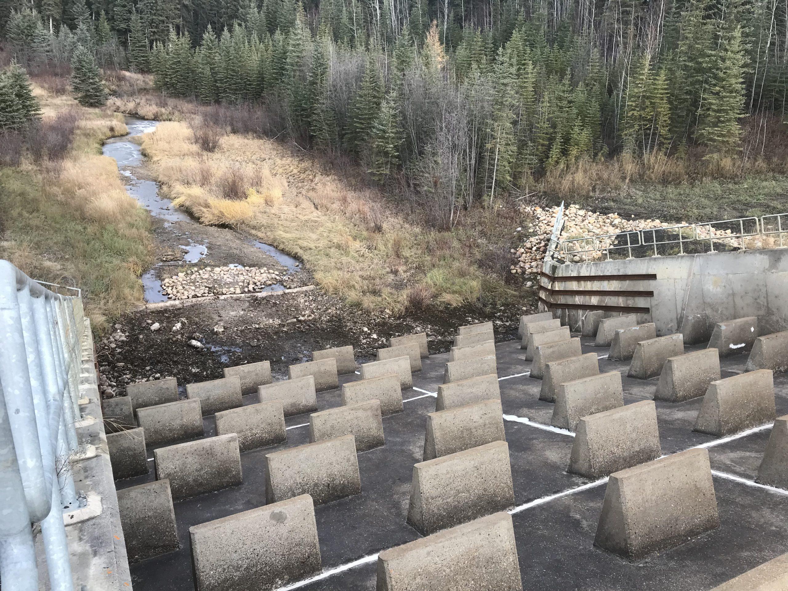 Dam Restored & Repaired.JPG